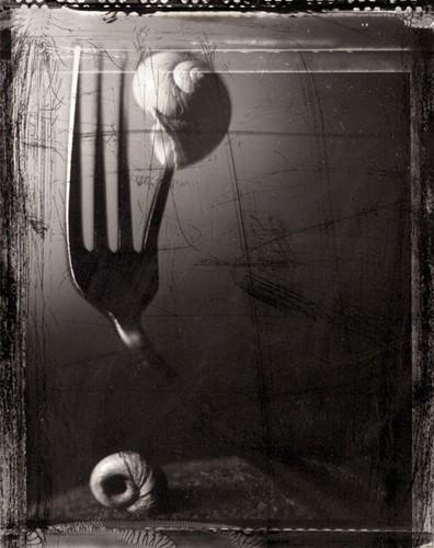Kunst aan de muur - Vissenstill vork - Fotografie Erwin Hartsuiker